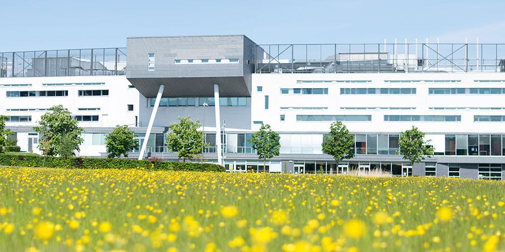 Campus[1]